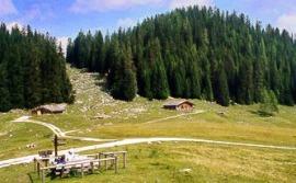 Moosenalm-Berchtesgaden
